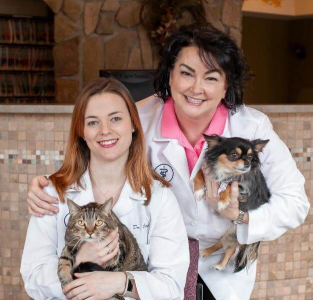 Welcome to 4Paws Veterinary Care