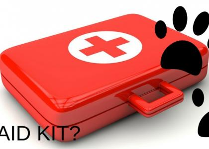 What goes in a pet first aid kit?